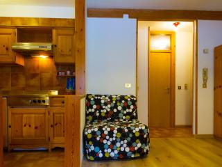 Great Place is A Perfect Ski Resort-all amenities! - Alba di Canazei vacation rentals