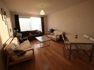Flat near Big Ben/London Eye/Covent Garden sleep 8 - London vacation rentals