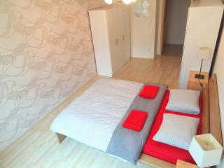 Ostrovskeho 17 - cosy apartment with high ceilings - Czech Republic vacation rentals