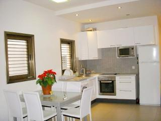 White Elegant 2 Bedrooms with 2 Balconies - Tel Aviv vacation rentals