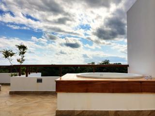 Tao Zen Penthouse: Golf Course + Wellness Center - Akumal vacation rentals