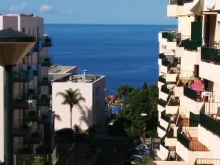 A Slice of Paradise in Madeira Island - Funchal vacation rentals
