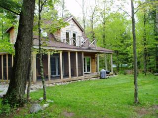 Wild Iris / luxury North woods river cottage - Lakewood vacation rentals