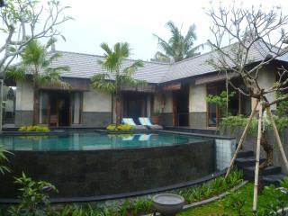 New villa near food, spas, yoga, village, and Ubud - Ubud vacation rentals