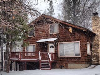 OUR HOME is YOUR HOME!!! - Big Bear Area vacation rentals