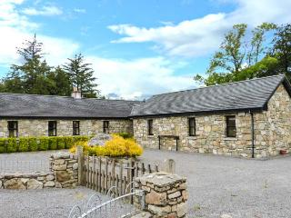 TOMMY CLARKE'S COTTAGE, open fire, ground floor, pet-friendly cottage near Ballygar, Ref. 915174 - Ballygar vacation rentals