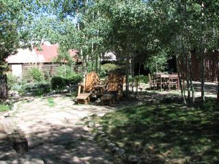 Great in-town Location -June and July dates avail! - Denver vacation rentals