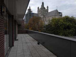 Penthouse Apartment house upfront St John Cath. - Eindhoven vacation rentals