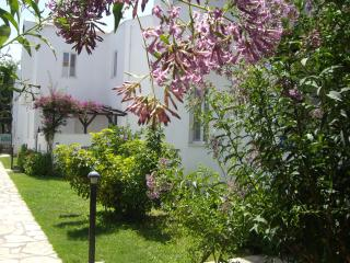 Villa Ruby - PRICES SLASHED - WI-FI FREE - Dalyan vacation rentals