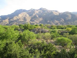 Charming and cozy 2 Bedroom  with Breath taking Mountain Views. - Tucson vacation rentals