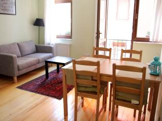Newly renovated apartment great location - Washington vacation rentals