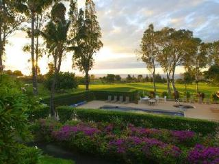 Waikoloa Villas G-201 $100/N special for 7+ nights - Kamuela vacation rentals
