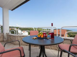 Beautiful Sea View Apartment in a countryside - Peruski vacation rentals