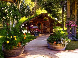 Alaska Hobbit Cabin - Talkeetna vacation rentals