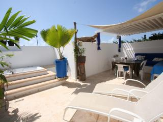 Pelicanos P.H To SHARE+Rooftop - close to all-LGBT - Playa del Carmen vacation rentals