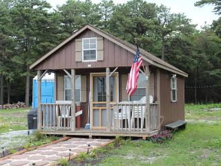 Charming Cabin Nestled Among Pines w/ TV & WiFi - Carlisle vacation rentals