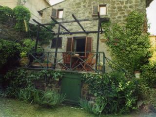 casa autonoma in antico villaggio - Bassano in Teverina vacation rentals