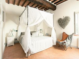 La Senesina , enchanting apartment near Siena - Siena vacation rentals