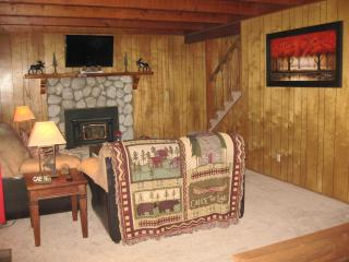 Winter Special- Bk 4 nights get 5th free! - Big Bear City vacation rentals
