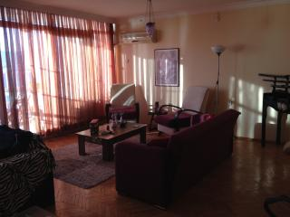 comfortable apartment with sea view - Narlidere vacation rentals
