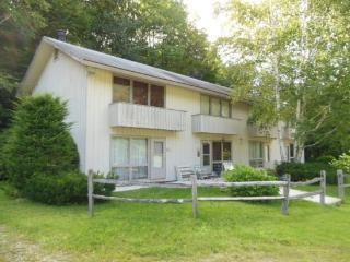 Valley Park Condo D1 - Two bedroom One bathroom - Very Economical!! - Killington vacation rentals