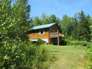 Bright Cabin with Deck and Internet Access - Brownfield vacation rentals
