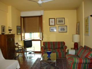 grande appartamento in pieno centro citta' a pisa - Pisa vacation rentals