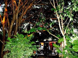 Casa Paradiso - Puerto Ayora vacation rentals