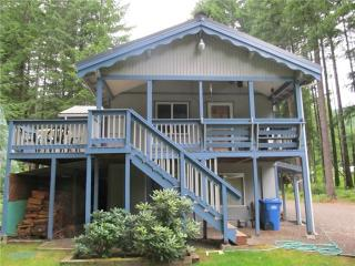 Mountain Cabin Retreat - Ashford vacation rentals