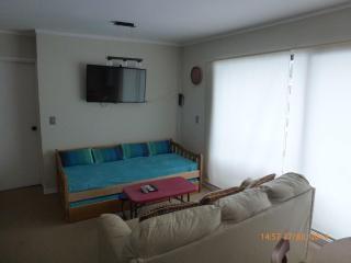 Termas de Chillan, Pinto, Chile, Apt. 2 - Termas de Chillan vacation rentals