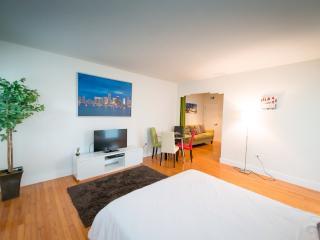 D.Top quality new condo,2 queen beds,sofa,sleeps 6 - Miami Beach vacation rentals