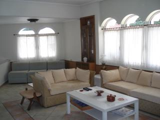 Cozy Villa with Alarm Clock and Children's Pool in Kalamos - Kalamos vacation rentals