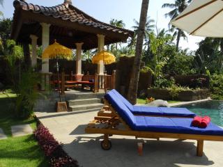 Perfect 3 bedroom Buleleng Villa with Internet Access - Buleleng vacation rentals