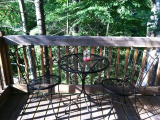 Private Apartment in Black Mountain - Black Mountain vacation rentals