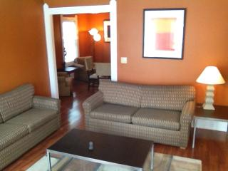 Nice 3 bedroom Condo in Cleveland - Cleveland vacation rentals