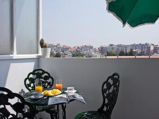 Poetry and Elegance in Oporto, Portugal (3BDR) - Porto vacation rentals