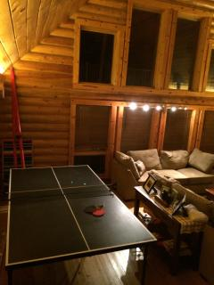 Gorgeous 3 bedroom Tampa Cabin with Deck - Tampa vacation rentals