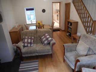 Comfortable Cottage / Blaenau Ffestiniog - Blaenau Ffestiniog vacation rentals