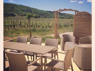 Nice Gite with Internet Access and Television - Parnac vacation rentals