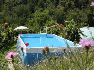 Cozy 2 bedroom Province of Lucca House with Internet Access - Province of Lucca vacation rentals