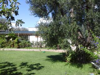 Appartamento in Villa a 50 metri dal mare - Rodi Garganico vacation rentals