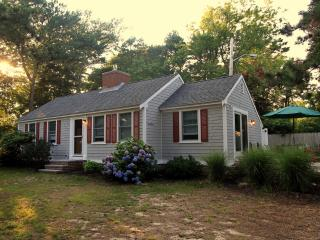 Dennis Seashores Cottage 32 - 2BR 1BA - Dennis Port vacation rentals