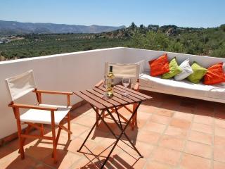 Luxury Detached Villa - Province of Cordoba vacation rentals
