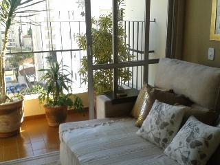 Pinheiros Leite - Sao Paulo vacation rentals