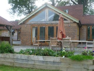 Lovely House with Deck and Internet Access - Haslemere vacation rentals
