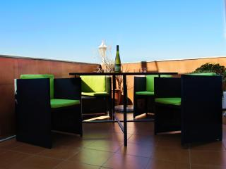 Attic City Centre with amazing terrace (WIFI) - Godella vacation rentals