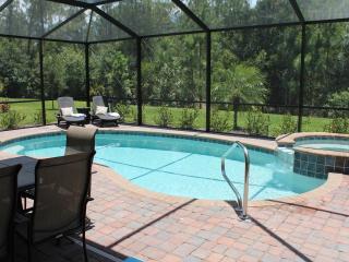 Florida Dream Home - Naples vacation rentals