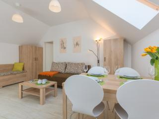 OLD TOWN Rooms and Apartments - APARTMENT 2 - Ljubljana vacation rentals