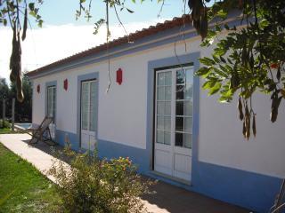 Bright 4 bedroom Grandola Cottage with Internet Access - Grandola vacation rentals