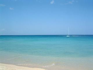 West Coast apartment walking distance to beautiful - Holetown vacation rentals